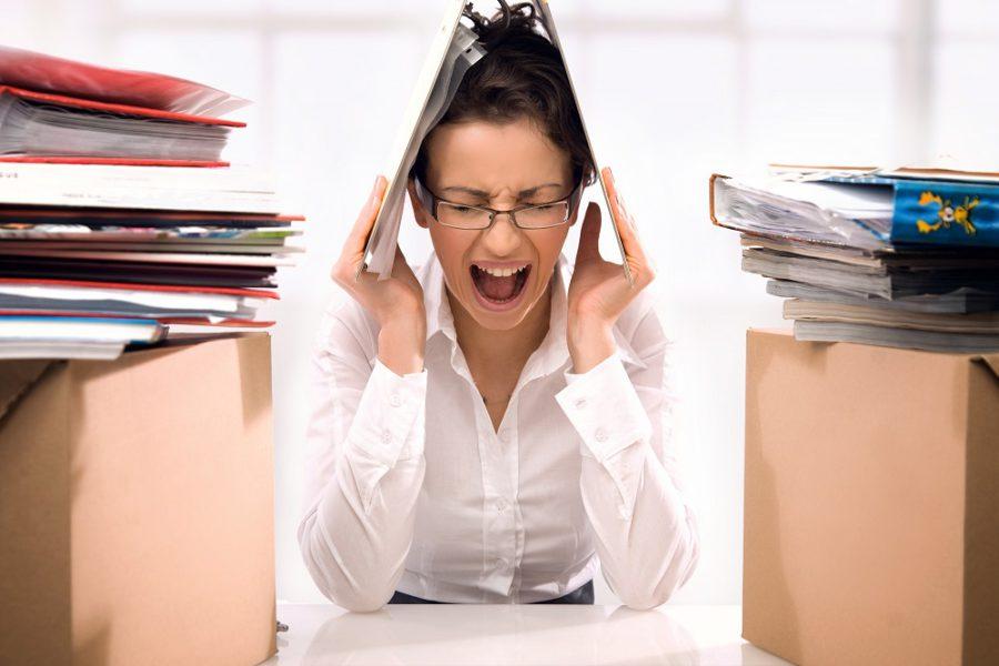 Układ nerwowy – dwie części pracujące wspólnie